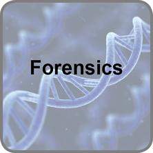 Forensics Training